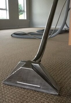 Carpet Cleaning 1 bed home